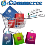 affordable E-commerce websites